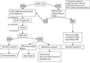 Empirical proposal of an adipocentric algorithm for the treatment of patients with T2DM. WC, waist circumference; CVRFs, cardiovascular risk factors; GLP1-R, glucagon-like type 1 peptide receptor; HbA1c, glycosylated hemoglobin; BMI, body mass index; LADA, latent autoimmune diabetes of the adult; LSCs, lifestyle changes.