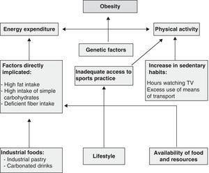 Conceptual framework of the main factors involved in obesity.