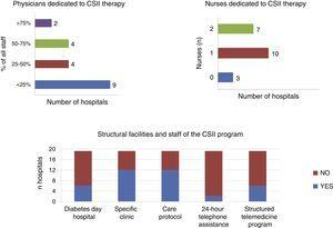 Human resources (number of physicians and education nurses) and organizational aspects related to continuous subcutaneous insulin infusion (CSII) therapy programs at hospitals of the public healthcare network of the Autonomous Community of Madrid.