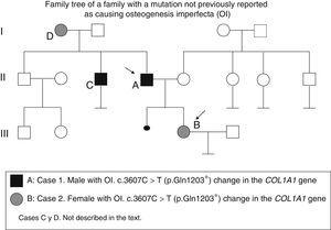 Family tree of a family with a mutation not previously reported as causing osteogenesis imperfecta (OI).