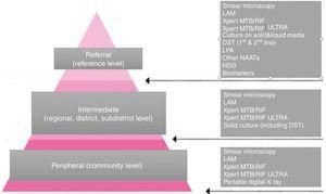 The three tiers of the network of TB laboratories and the responsibilities and the tests offered at each level.