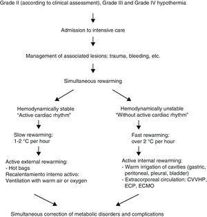 Algorithm for the management of hypothermia victims in a hospital with intensive care facilities.49 ECP, extracorporeal circulation pump; ECMO, extracorporeal membrane oxygenation; CVVHP, continuous venous–venous hemofiltration and hemoperfusion.