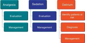 Domains of the bundle for the management of analgesia, sedation and delirium.