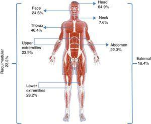 Percentage of injuries coded according to the different areas contemplated by the Abbreviated Injury Scale.