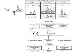 Diastolic dysfunction in the critically ill patient