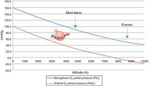 Correlation among altitude, atmospheric oxygen partial pressure (PO2), and arterial partial oxygen pressure (PaO2). PaO2: theoretical arterial oxygen partial pressure in exposure to acute hypoxia (without acclimatization).