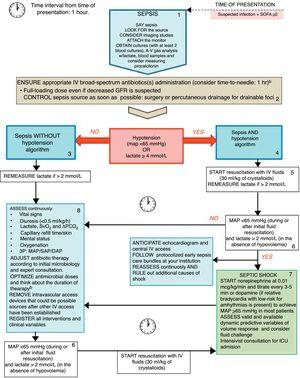 The Rational Life Support in Sepsis (RALSS) algorithm. This algorithm is based on the Surviving Sepsis Campaign (SSC) hour-1 bundle of care, as well as adapted to the institutional protocol and available resources. At time zero, clinician on charge should suggest verbally and share with other staff members the diagnosis (say sepsis), look for the source (and consider imaging studies), attach the monitor to the patient and obtain at least 2 blood and other cultures according to clinical suspicion (preferably before administration of broad-spectrum antibiotics) (box 1). Afterwards, administration of appropriate IV antibiotic(s) and the best strategy for control of sepsis source should be ensured (if a drainable focus of infection is present) (box 2). Sepsis without hypotension(box 3)or Sepsis and hypotension(box 4) pathway should be followed according to patient status. If hypotension is present, start resuscitation with IV fluids (30ml/kg) and re-measure lactate if initial value was >2mmol/L or if clinical deterioration exists although the initial lactate was ≤2mmol/L (box 5). If hypotension persists and lactate is >2mmol/L start vasopressors only in those patients who have received an initial resuscitation with IV fluids and are not considered to be hypovolemic (box 6 and box 7). In septic shock patients assess for fluid responsiveness and ask for an intensivist consultation (box 7). Continuous assessment of clinical and laboratory variables and control of focus of infection reassessment may be carried out to enhance initial resuscitation interventions (box 8). Complementary assessments may be requested, and institutional protocol activated. During all interventions continuous reassessment and ruling out of other sources of shock should be conducted (box 9). ID denotes Infectious Diseases, MAP mean arterial pressure, SAP systolic arterial pressure, DAP diastolic arterial pressure, ScVO2 central venous oxygen saturation, PCO2 Partial pressure of carbon dioxide, ICU i