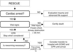 Triage and decision making algorithm for avalanche victims under conditions of cardiac arrest. Source: Modified from Kornhall DK, Martens-Nielsen J. The prehospital management of avalanche victims. J R Army Med Corps. 2016;162:406–412. doi:10.1136/jramc-2015-000441.52