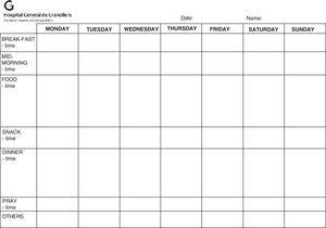 Food Registry Sheet.