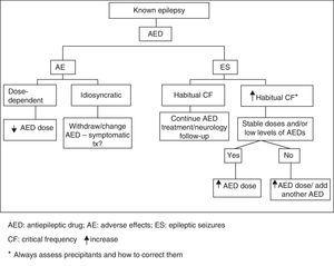 Action algorithm for patients with known epilepsy