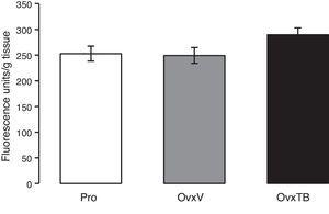 Graph representing mean values±standard value for each group (n=10 rats per group). Results are expressed in fluorescence units/g of fresh tissue. OvxV: ovariectomised rats treated with vehicle; OvxTB, ovariectomised rats treated with tibolone (1mg/kg); Pro: rats in the proestrus phase.