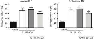 Effect of natural antagonist of IL-1β receptor (IL-1Ra) injected alone and in combination with IL-1β on the number of eosinophilic cells detected in the hippocampal dentate gyrus (DG) following SE. The left panel shows data for the hippocampus ipsilateral to the cytokine injection site; the right panel shows data for the contralateral hippocampus. Bars show mean±SEM number of eosinophilic cells in the vehicle group (veh), the 3ng IL-1β group, the IL-1β+IL-1Ra (3 and 30ng, respectively) group, and the IL-1Ra (30ng) group (n=6 per group). *P<.05 vs vehicle group.