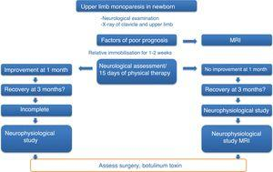 Action protocol for newborns with upper limb monoparesis.