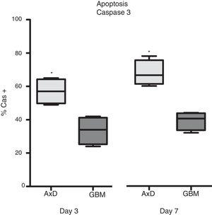 Caspase 3 expression. Cas3 expression was considerably higher in transfected cells than in GBM cells at day 3 of differentiation. This effect was more marked at day 7, with nearly twice as many Cas3+ transfected cells than Cas3+ GBM cells. Graphs show means and standard error. *P<.05. GBM: glioblastoma multiforme.