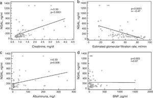 Correlations of plasma neutrophil gelatinase-associated lipocalin with creatinine (a), estimated glomerular filtration rate (b), albuminuria (c), and B-type natriuretic peptide (d). BNP: B-type natriuretic peptide; NGAL: neutrophil gelatinase-associated lipocalin.
