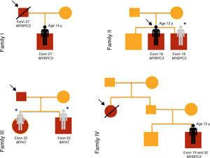 Genograms of families under study at initial assessment y: years.