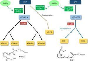 Biosynthesis of aspirin-triggered resolvins and protectin. <span class=