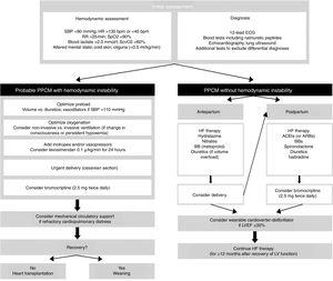 Algorithm for management of patients with peripartum cardiomyopathy (adapted from Bauersachs et al.12). ACEIs: angiotensin-converting enzyme inhibitors; ARBs: angiotensin receptor blockers; BBs: beta-blockers; ECG: electrocardiogram; HF: heart failure; HR: heart rate; IV: invasive ventilation; LV: left ventricular; LVEF: left ventricular ejection fraction; PPCM: peripartum cardiomyopathy; RR: respiratory rate; SBP: systolic blood pressure; SpO2: peripheral oxygen saturation; SvcO2: central venous oxygen saturation.