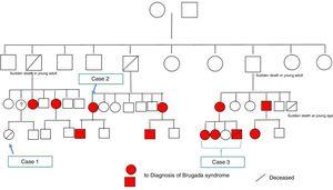 Family tree of the affected family.