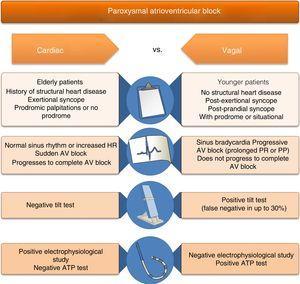 Differential diagnosis of causes of syncope associated with atrioventricular block. ATP: adenosine triphosphate; AV: atrioventricular; HR: heart rate.