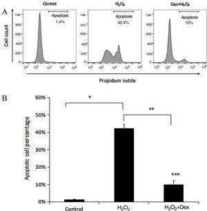 Dexmedetomidine suppresses H2O2-induced cardiomyocyte apoptosis. Apoptosis was detected using fluorescence-activated cell sorting (FACS) analysis. (A) Cardiomyocyte apoptosis was determined by analyzing annexin V and propidium iodide binding with FACS; (B) quantification of the apoptotic cardiomyocyte percentage. Statistical significance was determined using one-way analysis of variance (*p<0.05, H2O2 vs. control; **p<0.01, Dex+H2O2 vs. H2O2; ***p<0.001, Dex+H2O2 vs. control, n=10 per group). H2O2 group: cardiomyocytes induced by H2O2 without dexmedetomidine preconditioning; Dex+H2O2 group: cardiomyocytes induced by H2O2 with dexmedetomidine preconditioning. Dex: dexmedetomidine; H2O2: hydrogen peroxide.