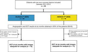 Study flowchart. Inclusion of patients in the study, identification of group to which they were allocated, and number of patients undergoing evaluation with optical coherence tomography (OCT). BES: A9-biolimus-eluting stent (BioMatrixTM); EES: everolimus-eluting stent (XIENCE VTM).