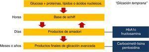 Formación endógena de productos finales de glicación avanzada.