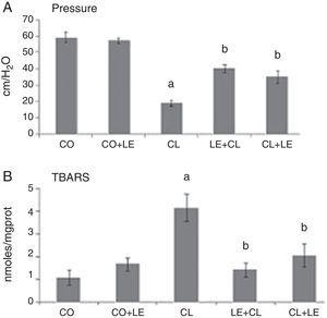 (A) Mean values of anal sphincter pressure in the different groups studied (cm/H2O): *significant increase of anal sphincter pressure in the CL group as compared to the other groups (p<0.05), #significant decrease of anal sphincter pressure in the LE+CL and CL+LE groups as compared to the CL group (p<0.05). (B) Evaluation of lipoperoxidation through the technique of thiobarbituric acid reactive substances (TBARS) (nmol/mg prot): *significant increase of lipoperoxidation in the CL group as compared to the other groups (p<0.05), #significant increase of lipoperoxidation in the CL group as compared to the other groups (p<0.05), #significant decrease of lipoperoxidation in the LE+CL and CL+LE CL groups as compared to the CL group (p<0.05).