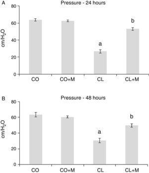 Effect of mesalazine in the levels of anal sphincter pressure in an experimental model of colitis. The results correspond to mean±standard error (SE). CO, control; CO+M, control+mesalazine; CL, colitis; CL+M, colitis+mesalazine. Anal sphincter pressure at 24 and 48h. a Significant difference between CL and CO/CO+M. b Significant difference between CL+M and CL.