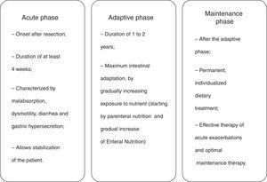 Adaptation phases post-intestinal resection.14