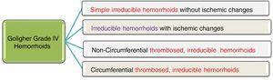 Goligher's Grade IV hemorrhoids as a heterogeneous group.