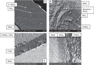 Microstructures of oxide–metal interfaces of the alloy at (a) 700°C, (b) 900°C, (c) 1200°C, and (d) 1400°C.