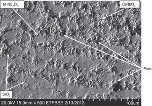 Microstructures of oxide surface at 1200°C.