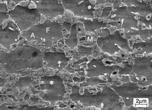 Microstructure of the studied steel. Longitudinal section perpendicular to the rolling plane. SEI image of etched specimen.