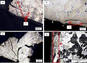 Sectional view of the 30N load wear tested Mg alloy refined with activated charcoal (C: 0.98%) (a and b) sub surface in unetched condition, (c) wear debris morphology, and (d) sub surface in etched condition. (1) Delamination cracks running to surface and (2) strain hardened region showing elongated grains.