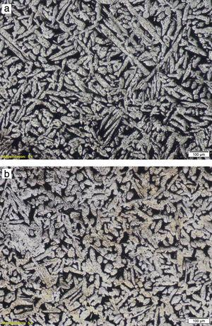 Optical micrographs of (a) 0.05Fe–0.05Fe modified Cu–Zn–Al alloy and (b) −0.025Fe – 0.075B modified Cu–Zn–Al alloy.
