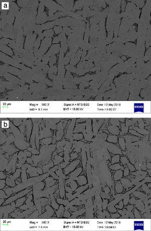 Back scattered electron images of (a) 0.05B modified Cu–Zn–Al alloy and (b) 0.1B modified Cu–Zn–Al alloy.