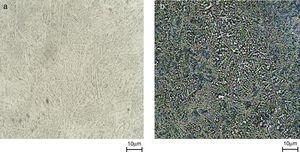 MO micrographs of Ti-6Al-4V alloy: (a) before and (b) after corrosion test.