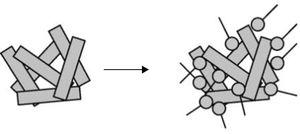 Aggregation of kaolinite particles in a high ionic strength environment [9].