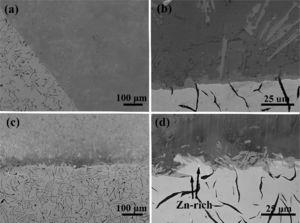 The SEM image of cross-section of Al/Fe bimetallic composites induced by hot-dipping pure Zn melt and Zn–Bi melt, respectively, with the same hot-dipping time 600s, temperature 833K and pouring temperature of 993±10K. Images (a) and (b) correspond to hot-dipping pure Zn melt method. Images (c) and (d) correspond to hot-dipping Zn–Bi melt method.