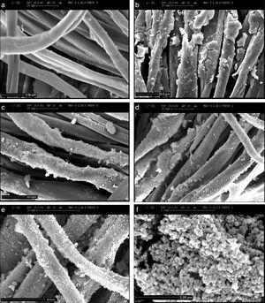 SEM micrographs taken from the textiles: (a) without coating, (b) coated with TiO2, (c) coated with N-TiO2 (water/TTIP: 200), (d–f) coated with N-TiO2 (water/TTIP: 4).