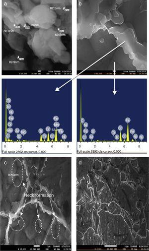 Characterization of sintered DSS 2205-5%TiN: (a) nano clusters of TiN, (b) SEM/EDX, (c) neck formation at powder surface and (d) TiN at grain boundaries.