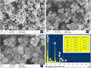 FE-SEM images of different magnifications and EDX of CDMO.