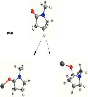 Mechanism of interaction between Au NPs and PVP monomer [M+=Au].