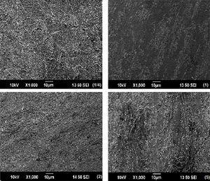 SEM images of the samples taken at ∼4mm of the mid-radius positions after HPT processing through different numbers of turns.