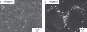 SEM images showing: (a) the grain distribution at the surface of the alloy&#59; and (b) the distribution of the precipitates (Mg17 Al12) at the grain boundaries.