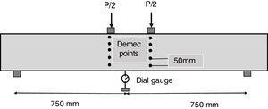 Location of demec point.