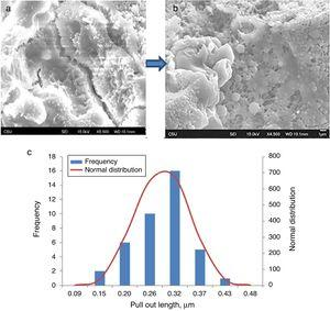 Alumina nanofiber reinforced GP treated at (a) 250°C, (b) 650°C, (c) distribution of pull out lengths of ANFs at 250°C.