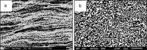 SEM micrographs of the cast samples subjected to six passes of ECAP for (a) 30min and (b) 120min of annealing at 275°C.