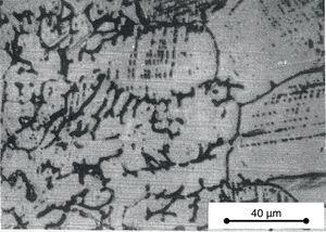 Optical micrograph of the transition from 347 weld metal (left region) to the 304 base metal (right region).